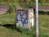 IMG_6986 -1