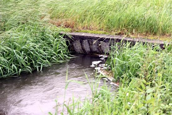 Brücke hinter den Gärten - Durchfluss zu gering